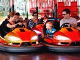 Bumper Car for Amusement Park